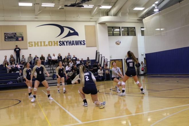 Shiloh Skyhawks Volleyball (Photo by Hannah Schaefbauer)
