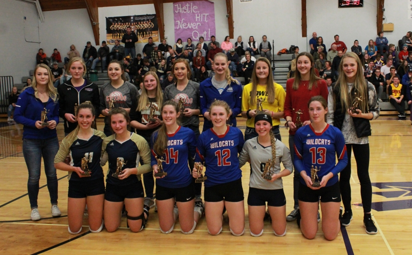 Mischel, Griess, Wanzek named to All-Region 5 Volleyball Team